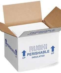 Dry-Ice Insulated Cold Shipping Box